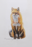 BIRGITTA SAFLUND ~ Fox II - watercolour - €300 - SOLD